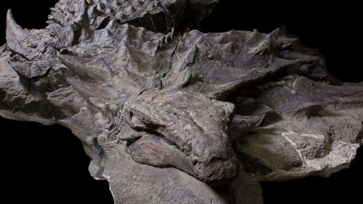 Ζωντανός δεινόσαυρος ανακαλύφθηκε από παλαιολόγους στον Καναδά