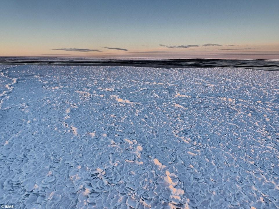 Σπάνιο θέαμα στην Ανταρκτική -Το περίεργο σχήμα του πάγου που μοιάζει με... δέρμα δράκου