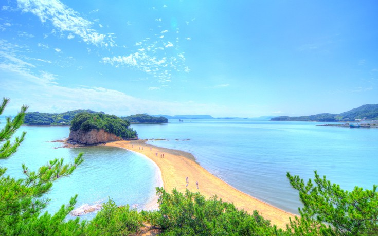 Vavel.gr | Το νησί της ελιάς στην Ιαπωνία έχει... άρωμα Ελλάδας