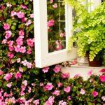 Vavel.gr | Μάθετε ποιο είναι το ιδανικό χρώμα για κάθε δωμάτιο του σπιτιού σας
